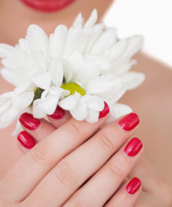 Closeup of young woman with red lips and red painted nails holding flowers over white background